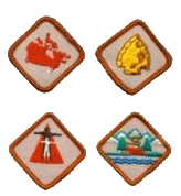 VoyageurActivityBadges.png