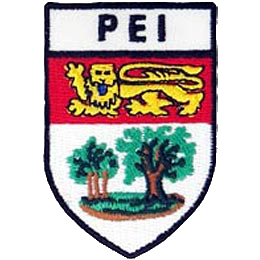 PE Shield.png