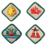 PathfinderActivityBadges.png