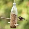Backyard-bird-feeder-spring-craft-photo-260-FF0507EFDA01.jpg