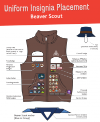 Insignia-placement-BeaverScouts.png