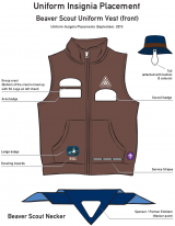 Insignia-placement-BeaverScouts-2011.png
