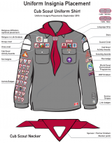 Insignia-placement-CubScouts-2011.png