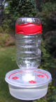 Hummingbird feeder 2.png